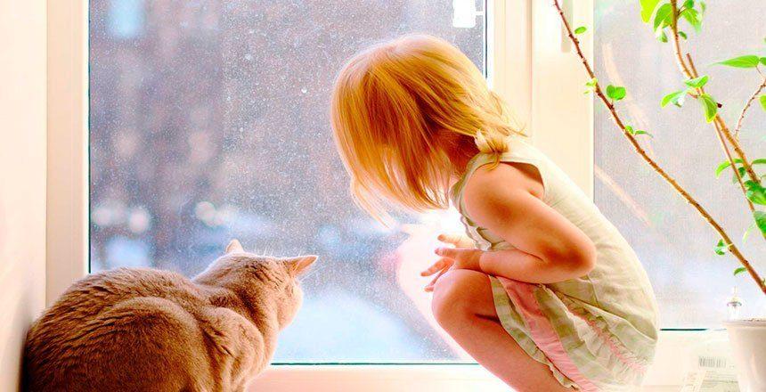 tu amiga la ventana